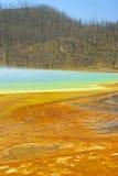 6 ingen yellowstone Royaltyfri Fotografi