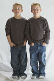 6 Jahre alte eineiige Zwillinge Lizenzfreie Stockfotografie