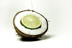 6 kokosów Zdjęcie Stock