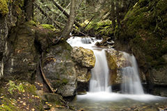 6 Middle Falls. A beautiful Waterfall surounds by a forest stock photos