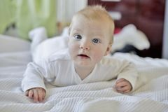 6 month old baby boy stock photos