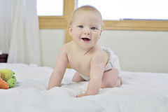 6 month old baby boy. Starting to think about crawling, with 1st teeth, wearing washable eco' nappies royalty free stock photography