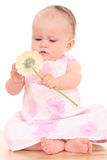 6 months baby girl with flower Royalty Free Stock Photography