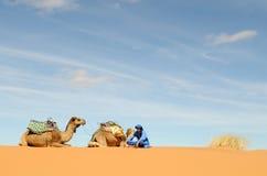 6 morrocan的沙漠 免版税库存照片