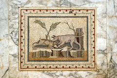 6 mozaika Zdjęcia Stock