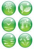 6 natural buttons Stock Image