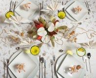 6 obiadowy elegancki stół Fotografia Royalty Free
