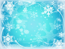 6 snowflakes Arkivbilder