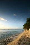 6 tropikalnych plażowych Fotografia Stock