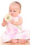 6 van het babymaanden meisje met bloem Royalty-vrije Stock Fotografie
