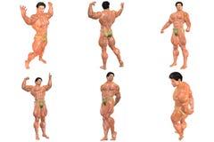 6 voor de Prijs van 1! 3D de Bouwer van het lichaam (met het knippen van wegen) Stock Afbeelding