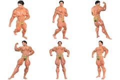 6 voor de Prijs van 1! 3D de Bouwer van het lichaam (met het knippen van wegen) Stock Foto