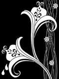 60 φανταχτερός floral διακοσμητ& Στοκ εικόνα με δικαίωμα ελεύθερης χρήσης