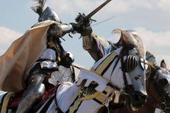 600th Aniversário da batalha de Grunwald Fotos de Stock Royalty Free