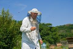 61蜂农 库存照片