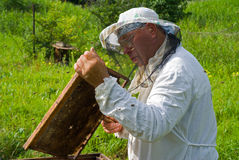 64蜂农 免版税库存照片