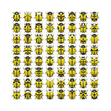 64 yellow bugs. An illustration of 64 different yellow bugs Royalty Free Stock Photos
