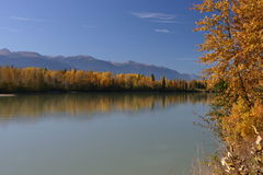 66 Autumn on the Fraser River Stock Photography