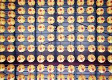 67/365 Chinese lanterns Royalty Free Stock Photos