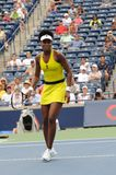 68 venus williams rogers 2009 чашек Стоковая Фотография