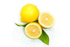 6yy98uo citron pn Arkivfoto