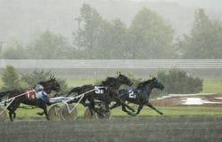 7上马具的赛马比赛 免版税图库摄影
