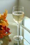 7冷静玻璃白葡萄酒 免版税库存图片