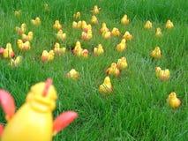7只小鸡疯狂的塑料 图库摄影