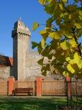 7座城堡strakonice 免版税库存照片