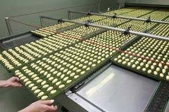 7新的食品工业 库存照片