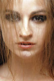 7根头发红色肉欲的射击工作室妇女 免版税库存照片