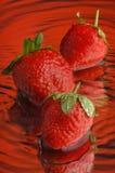 7草莓 免版税库存照片