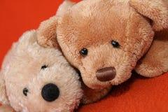 7 αντέχουν teddy Στοκ εικόνες με δικαίωμα ελεύθερης χρήσης