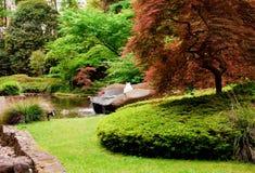 7 κήπος ιαπωνικά Στοκ Φωτογραφία
