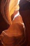 7 картин природы Стоковые Фотографии RF