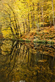 7 озер Стоковая Фотография