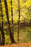 7 озер Стоковое Изображение RF