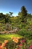 7 японцев сада Стоковая Фотография RF