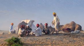 7 2009 верблюдов справедливый ноябрь puskar Стоковые Изображения RF