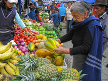 7 2009 ecuador marknad kan otavaloen Royaltyfri Bild