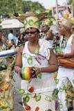 7 2010 ετήσιο καρναβάλι Φεβρ&omicron στοκ φωτογραφία