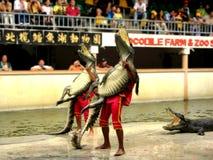 7条鳄鱼农厂samutprakan动物园 库存图片