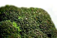 7 broccoli Fotografering för Bildbyråer