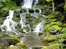 7 cascades à écriture ligne par ligne vertes Photos stock