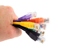 7 cavi colorati della rete tenuti in mano Immagini Stock Libere da Diritti