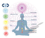 7 Chakras, ida and pingala Royalty Free Stock Image