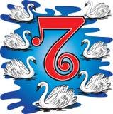 7 cisnes que nadan Imágenes de archivo libres de regalías