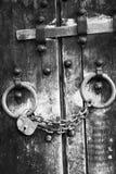 7 dörrar säkrar trä Arkivbild