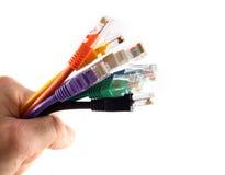 7 de gekleurde Handbediende Kabels van het Netwerk stock afbeeldingen