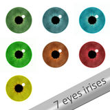7 eyes irises. 7 realistic eyes irises on white stock illustration